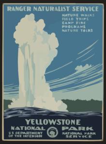 yellowstone mded